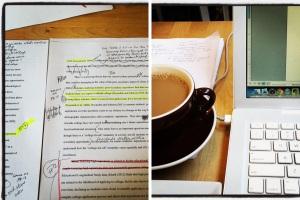 Dissertation in progress 1